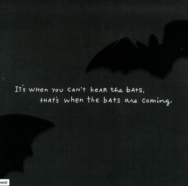 Cant hear the bats