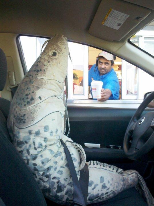 Fish at drive thru