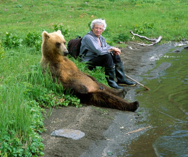 Relaxing bear