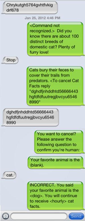 Cat facts3