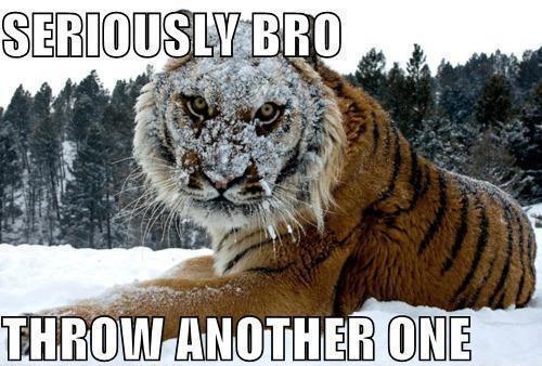 Seriously bro