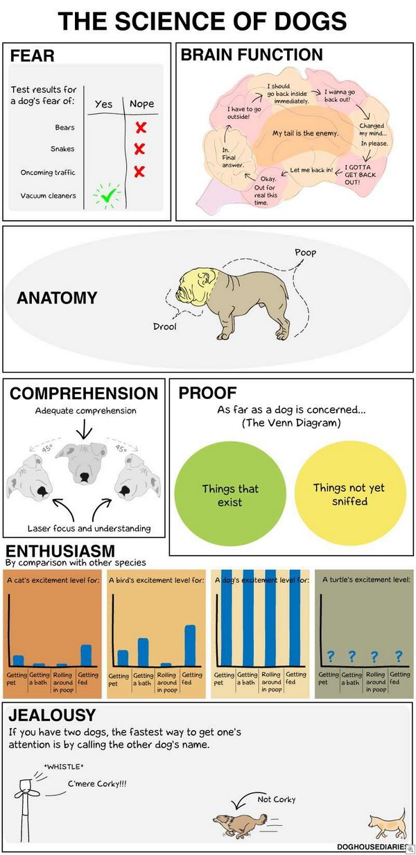 The_science_of_dogs (1)