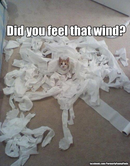 Did you feel that wind