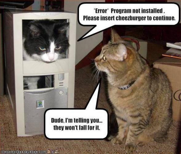 Cat computer error