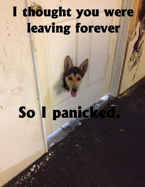 I thought you were leaving