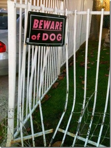 bigger fence