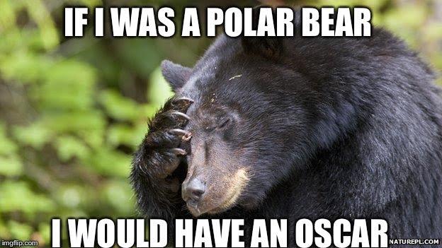 If I was a polar bear