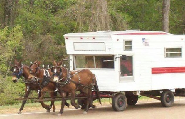 RV with 3 Horsepower