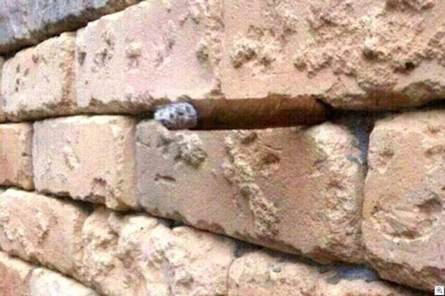 Brick wall illusion