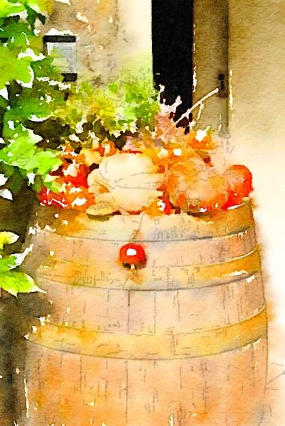 Pumpkins, The Fattoria at San Gimignano