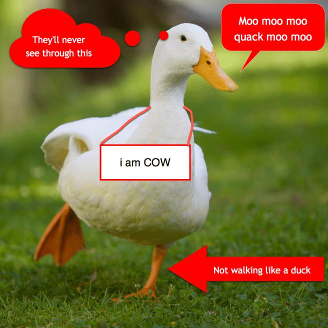 not_a_duck