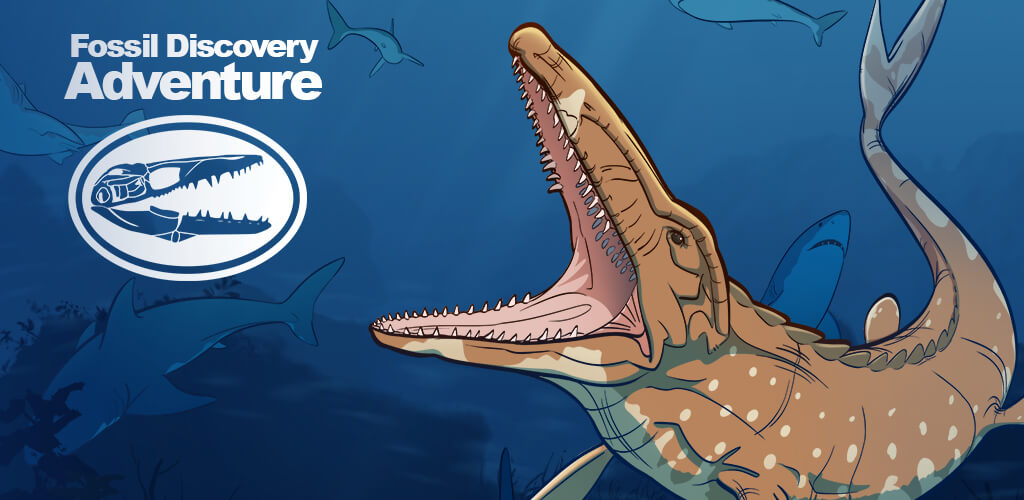 Fossil Discovery Banner