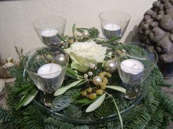 Olivendattelpalmrosenadvent