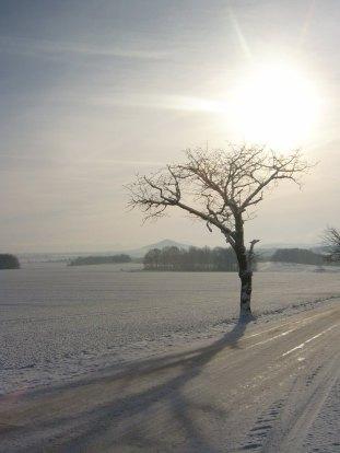 Wintersonnenmittag