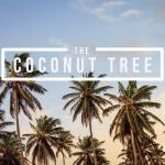 Coconut Tree Oxford