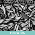 Oxford Food Directory Meat & Fish
