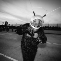 Greetings Earthlings - 2015 Halloween Playlist is here!