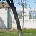 Only One Mosque Left in Bashisihu Township Wusu City