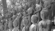 buddha-statues