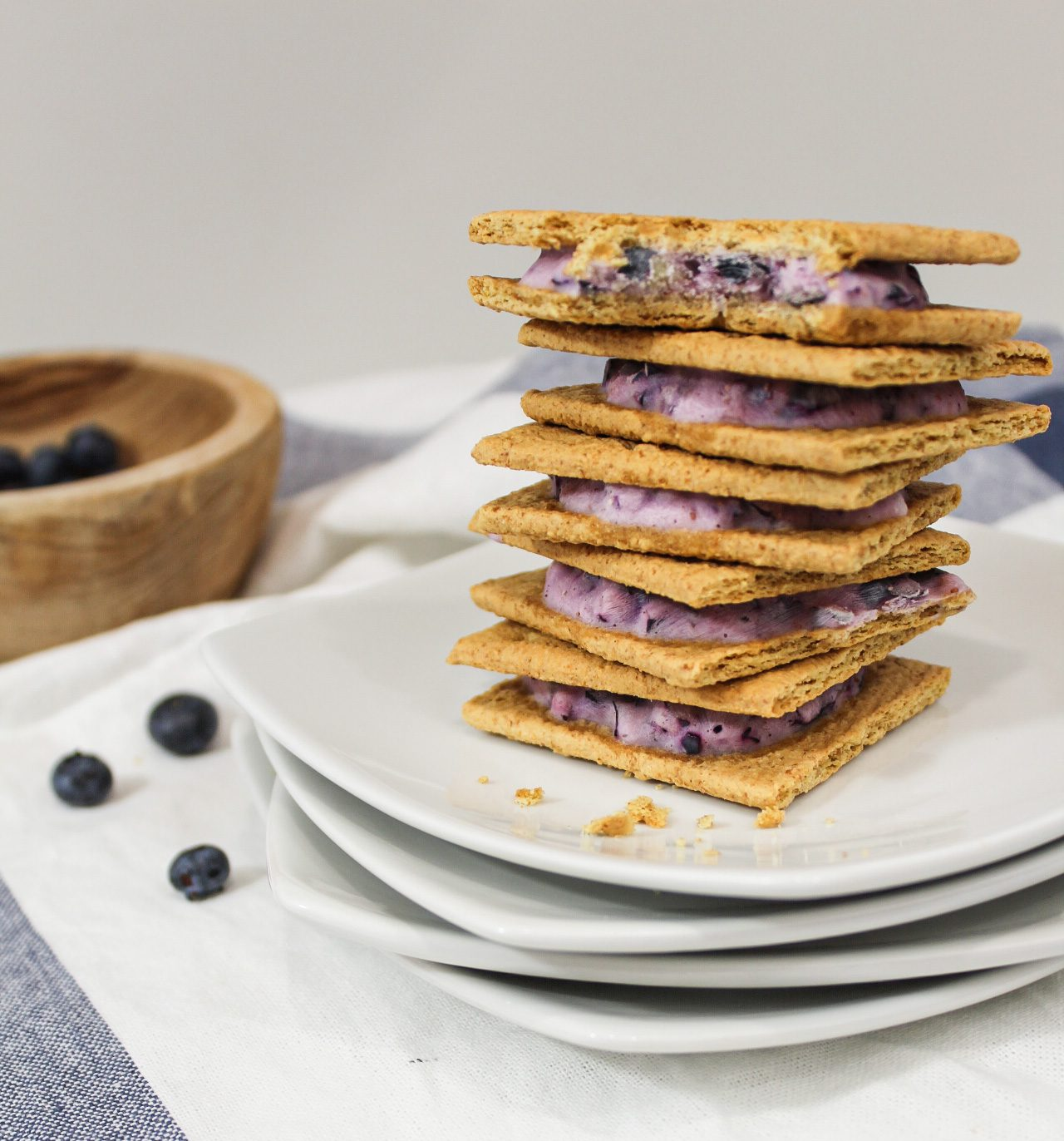 Blueberry Frozen Yogurt Sandwiches