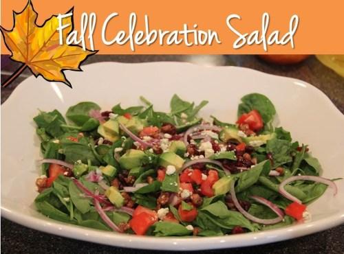Fall Celebration Salad - Bitz & Giggles