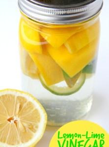 Lemon Lime Vinegar