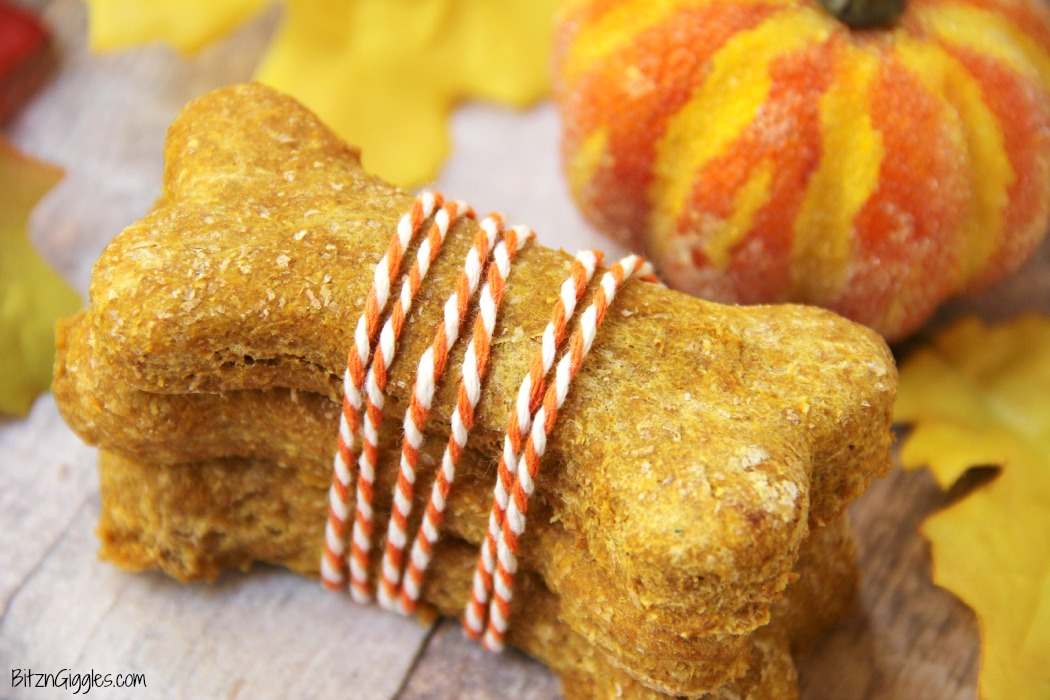 Peanut Butter Pumpkin Dog Treats - A crunchy treat made of pumpkin and peanut butter, perfect for your loving fur babies!
