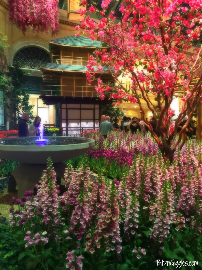 2016 Bloggers Retreat - Blogging retreat at The Wyndham Grand Desert Resort in Las Vegas, NV. We all had so much fun!!