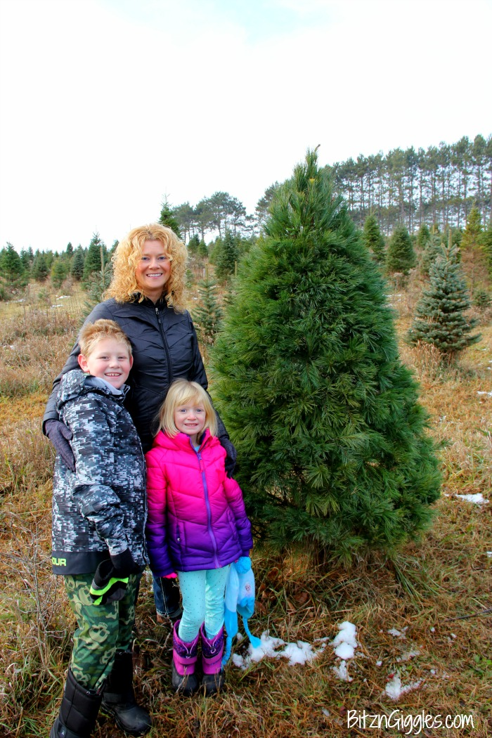 Caring for a Real Christmas Tree - Tips on caring for a natural Christmas tree so it lasts all season long!