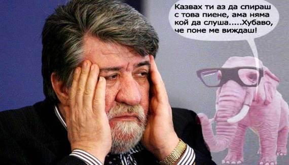Vejdi_rozov_slon
