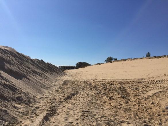 Американци алармират за унищожението, родните институции мълчат   Мутрите унищожиха несебърските дюни
