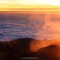 Bokod, Benguet: On Climbing Luzon's Highest Peak, Mount Pulag