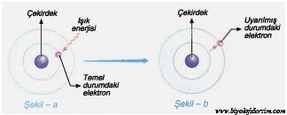 elektronların temel ve uyarılmıs hali
