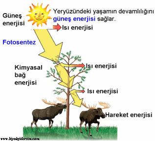 enerji donusumleri