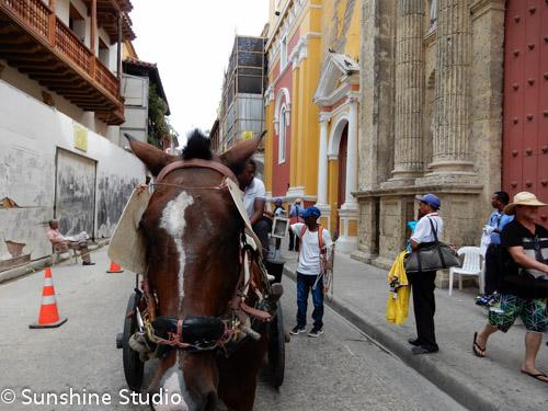 Panamal Canal Trip-11