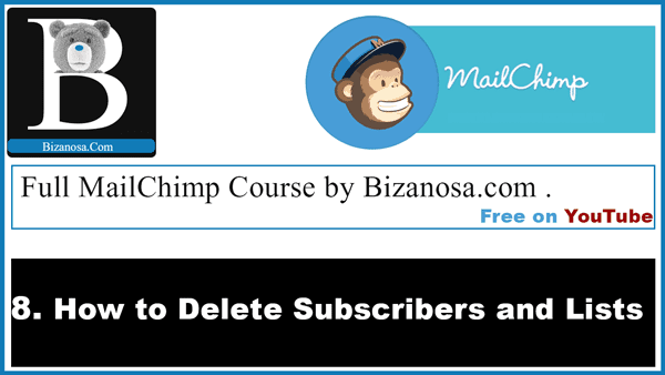 How to delete mailchimp subscribers