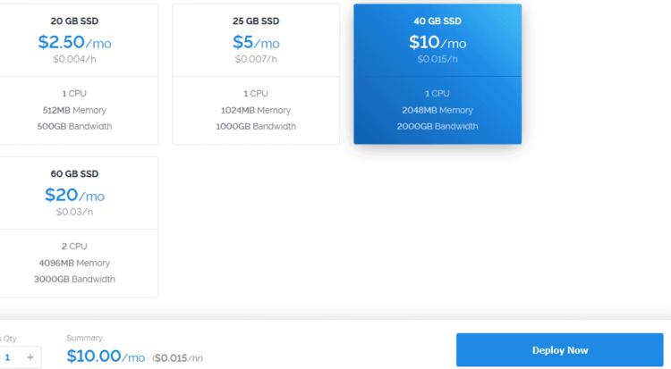 Server size on Vultr