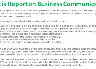 What is Report