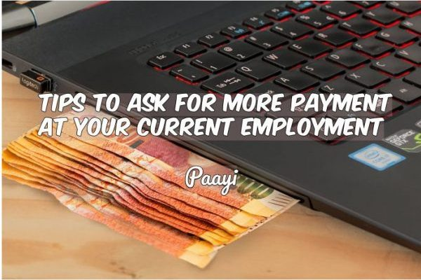 Paayi - career and business improvement
