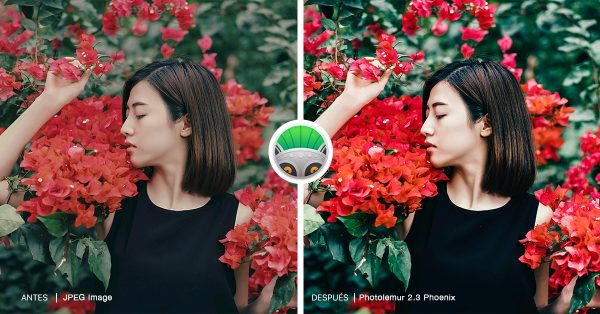 PhotoLemur - Girl with Red Flowers