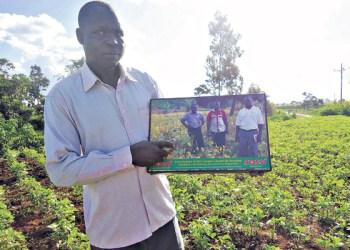 Soybean Farming in Kenya