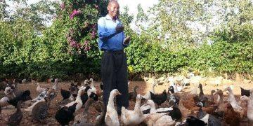 duck farming in Kenya