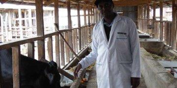 dairy farming in Meru