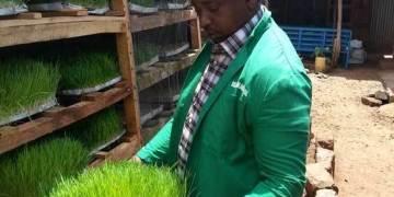 rabbit farming Kenya