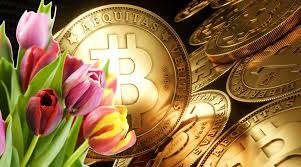 Bitcoin: spekulacyjna bańka na miarę holenderskiej tulipomanii z XVI wieku