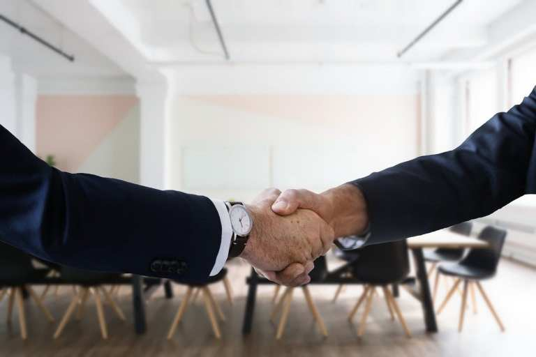 job, interview, handshake