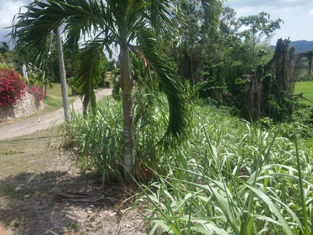 This is a residential lot in the community of Orange Bay Country Club, Hanover