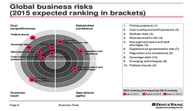 brisk business-pulse-dual-perspectives-on-the-top-10-risks-and-opportunities-2013-and-beyond-8-638