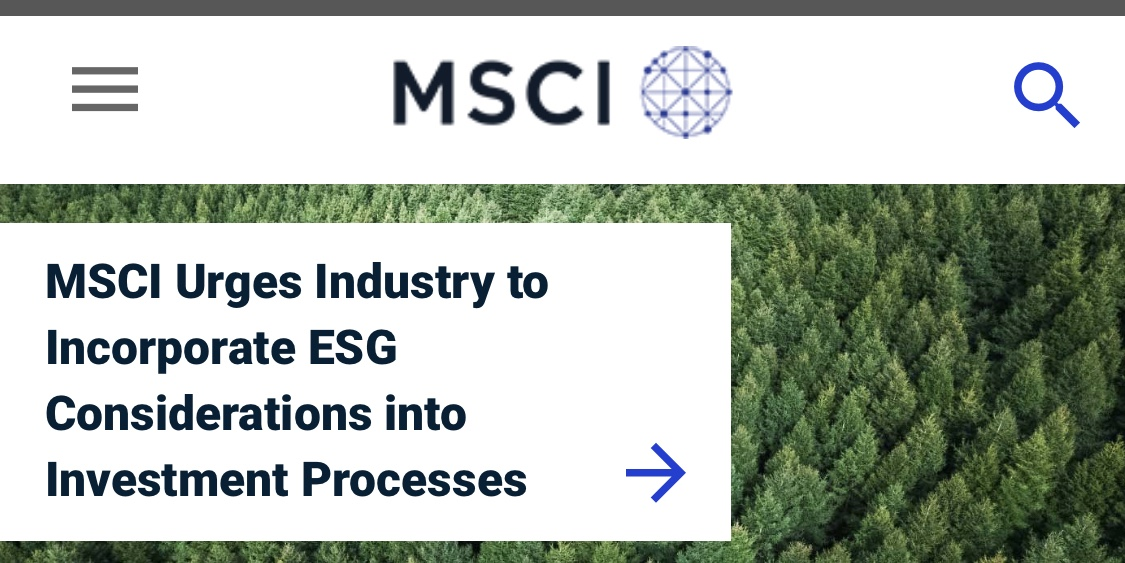 MSCI urges investors to consider ESG in decisions