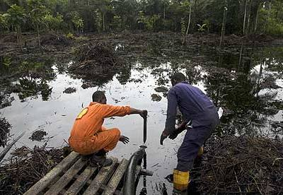 Accept Responsibility For Oil Spill, CUPEJ Tells Chevron